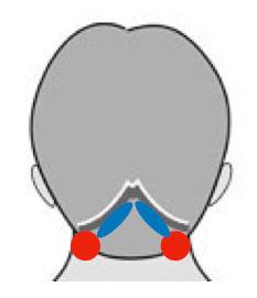 頭痛の急所